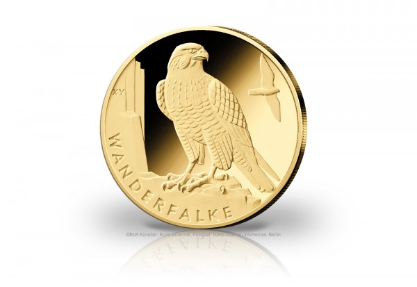 20 Euro Goldmünze 2019 Deutschland Wanderfalke st Prägestätte D