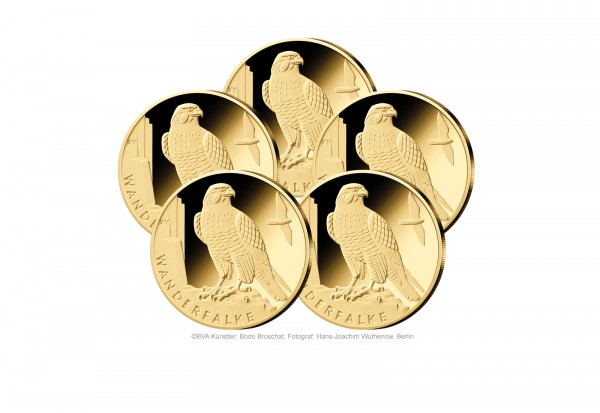 20 Euro Goldmünze 2019 Deutschland Wanderfalke Prägestätte A-J